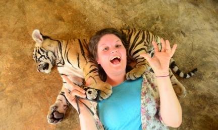 Tiger-Kingdom-Chiang-Mai1